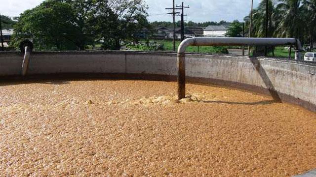 14498-07-Tanques-abiertos-de-fermentacion-del-jugo-de-la-caña-de-azúcar